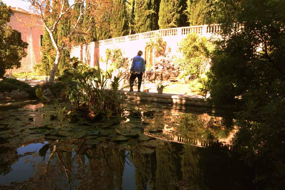 Cazadora vaquera Monet nenufares Agua 4
